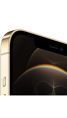 iPhone 12 Pro Max 5G 512GB Gold Back