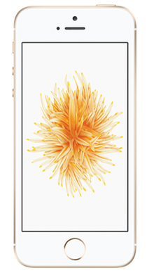 Apple iPhone SE 32GB Gold Front